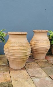 Pair of terracotta olive pots